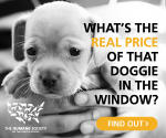You Can Help Stop Puppy Mills